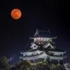 犬山城と城下町の夜景