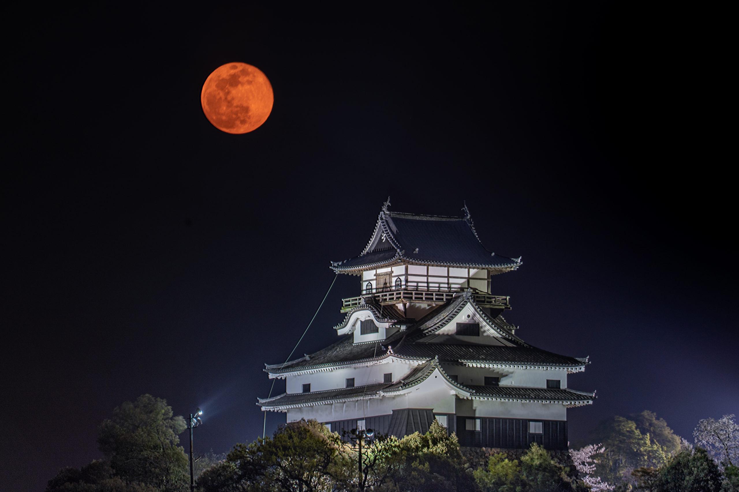 名城と名月