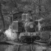 オート先生の総回診(テーマ:電車、2019自慢の1枚、冬)