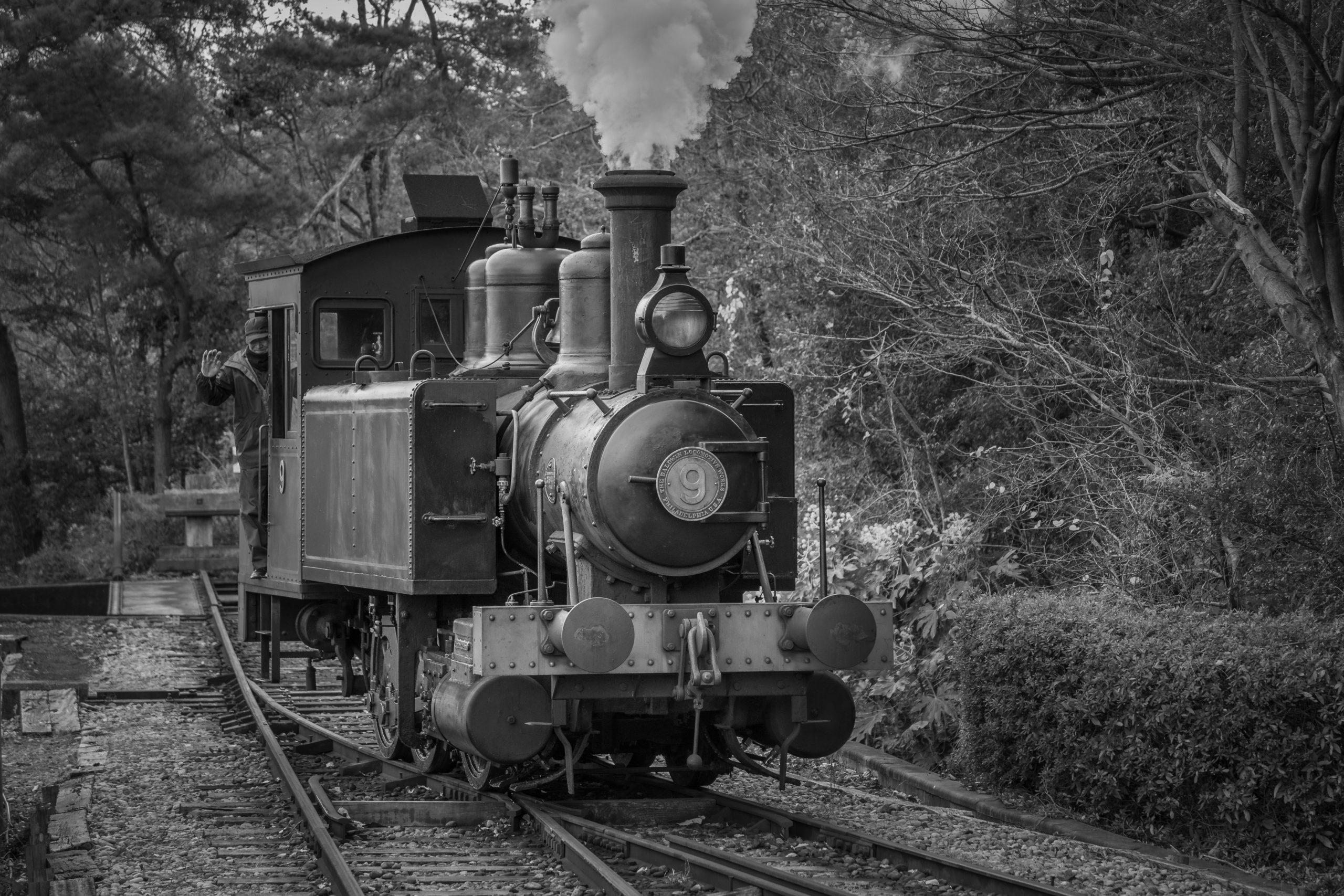オート先生の総回診:テーマ「電車のある風景」2