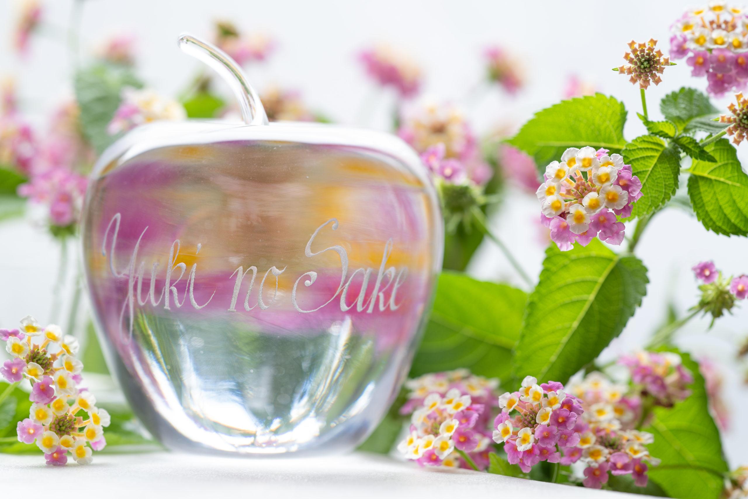 ガラスの林檎(由紀の酒)