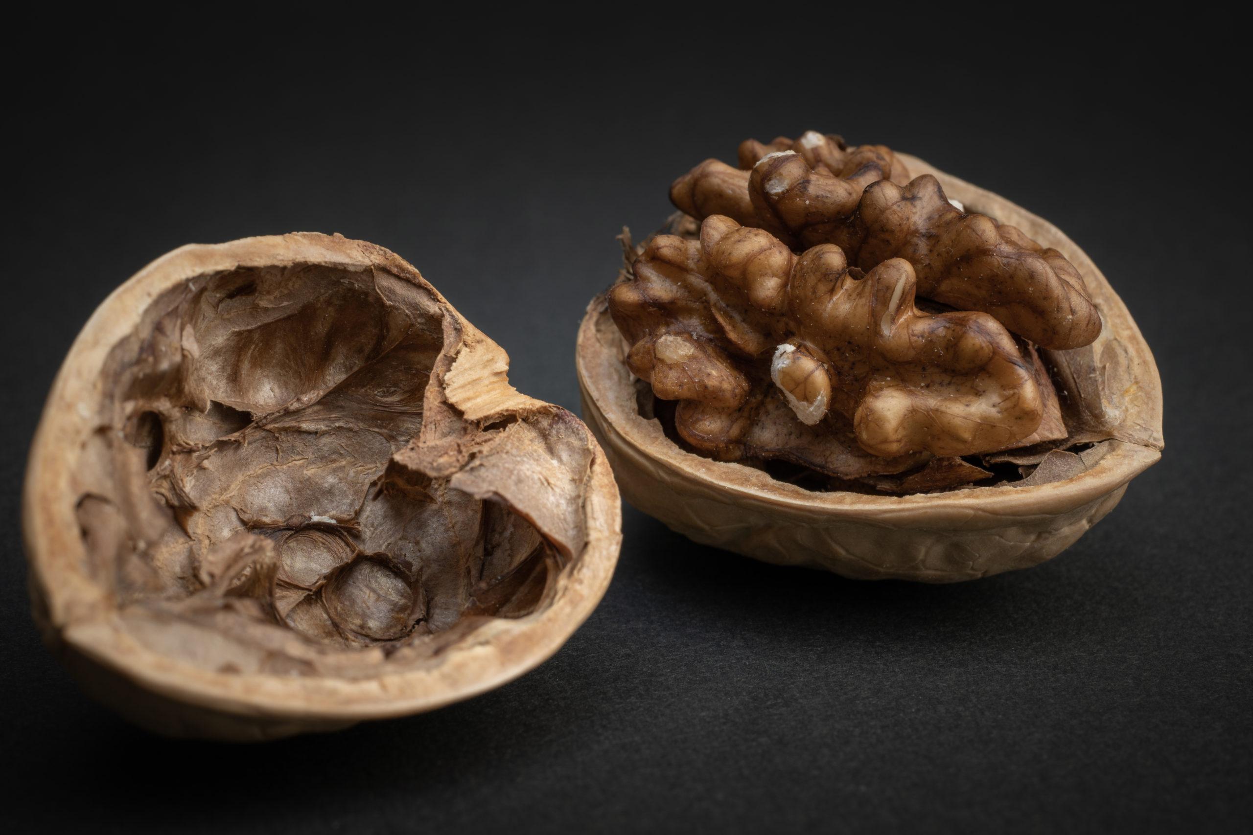 胡桃(くるみ)Walnuts